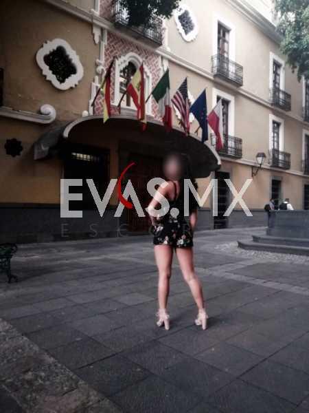edecanes ,Escorts certificadas en Puebla  fajes y caricias